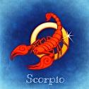 scorpio-759377_960_720.jpg