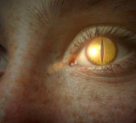 eye-465438_960_720.jpg