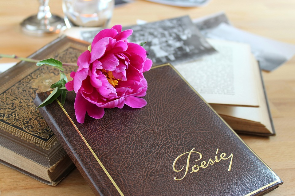 poetry-album-3433279_960_720.jpg