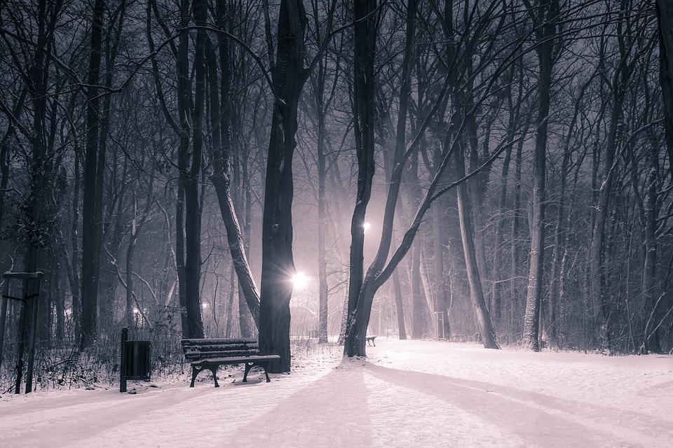 winter-3975804_960_720.jpg